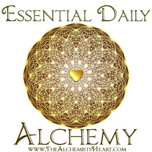 essential daily alchemy