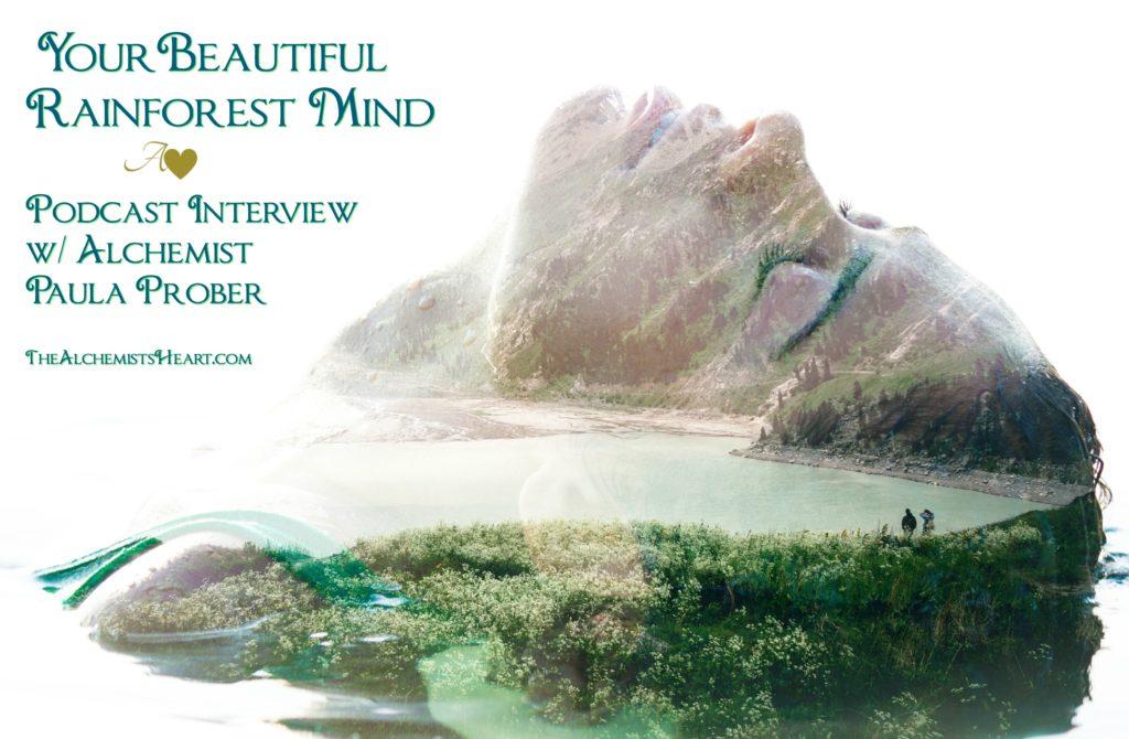 rainforest mind